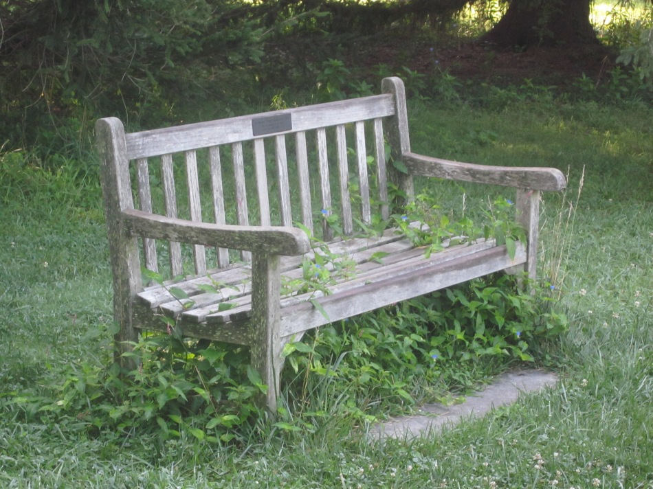 Overrun Bench